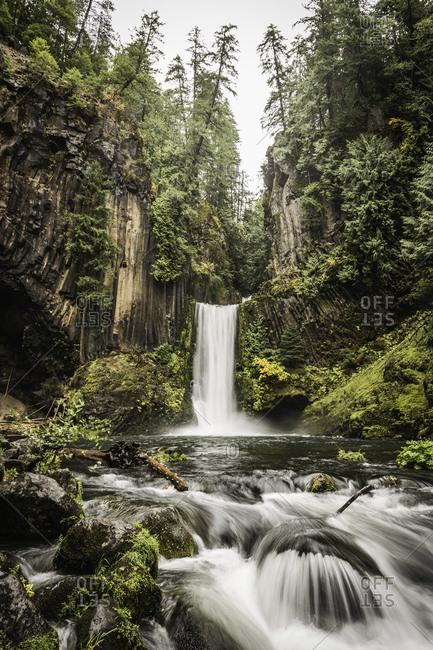 View of Toketee Falls, Umpqua National Forest, Oregon, USA