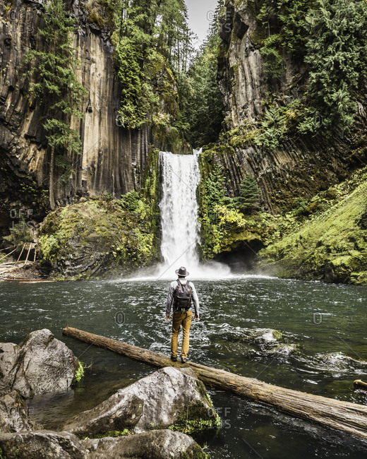 Man standing on log looking at Toketee Falls, Umpqua National Forest, Oregon, USA