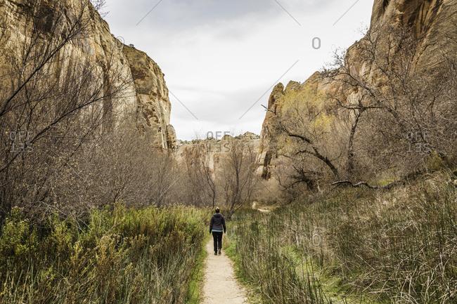 Woman hiking, rear view, Calf Creek Falls near Escalante, Utah, USA