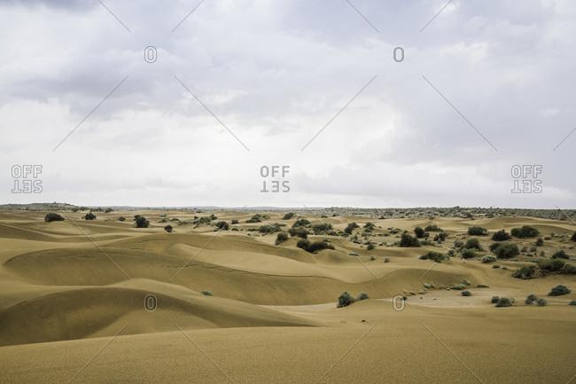Thar desert, Jaisalmer, Rajasthan, India