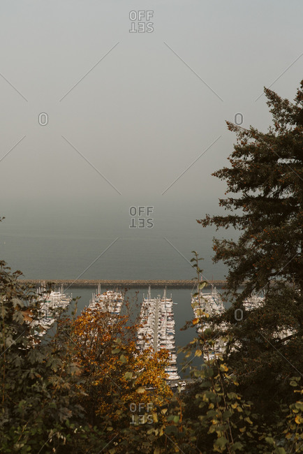 Haze from wildfires over a boat harbor on the coast of Seattle, Washington