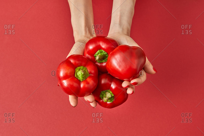Sweet red paprika vegetables in the woman's hands.