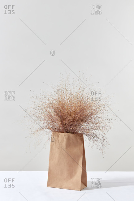 Bunch of natural dry cereal crops in a paper bag.