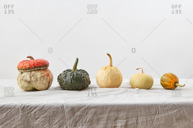 Natural organic pumpkins vegetables assortment.