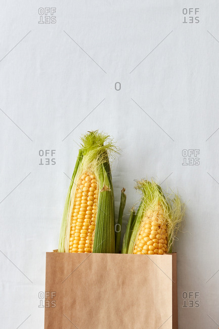Paper shopping eco bag with natural corn vegetables.