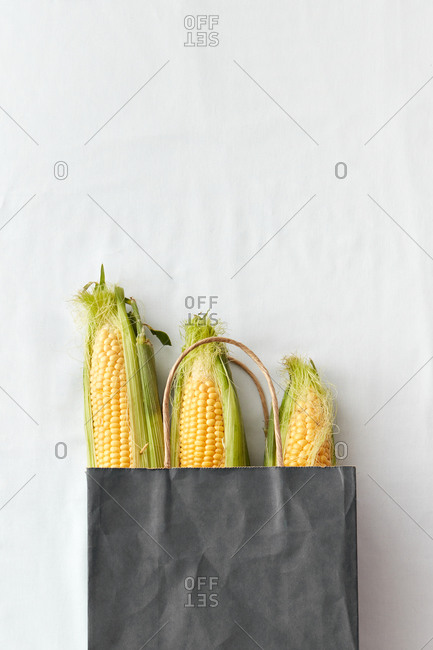 Fresh ripe ears of corn in a black paper bag.