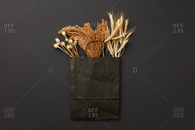 Black paper bag with different natural organic crops.