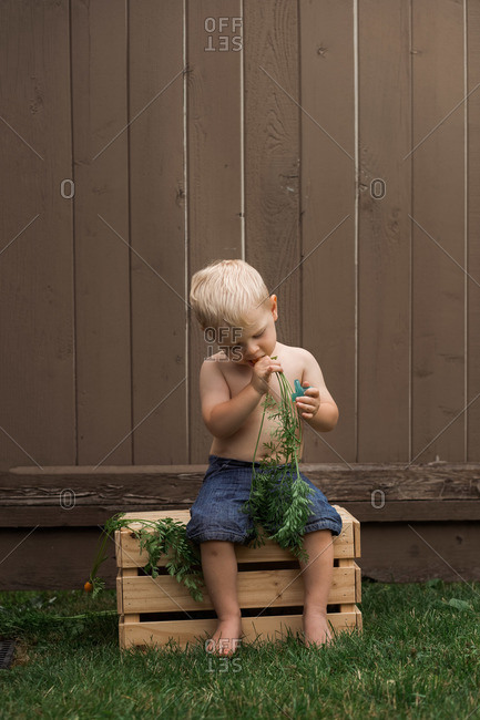 Toddler boy sitting on wooden crate eating a carrot