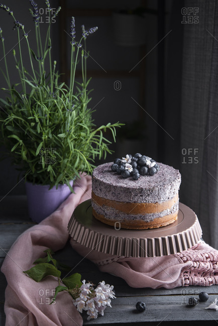 Layer cake with blueberries, mousse and fresh blueberries