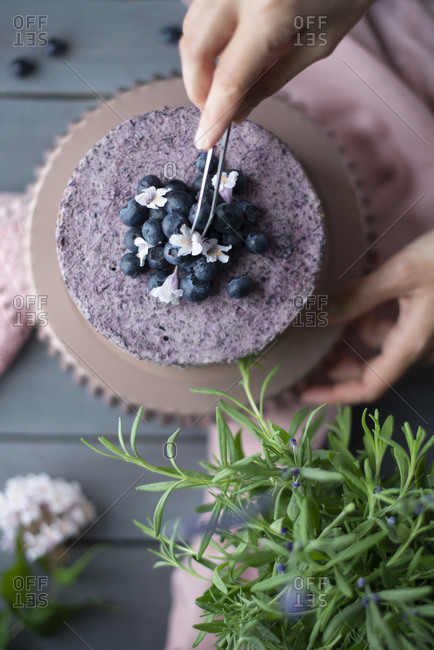 Overhead view of a layer cake with blueberries and mousse getting decorated with fresh blueberries and flowers