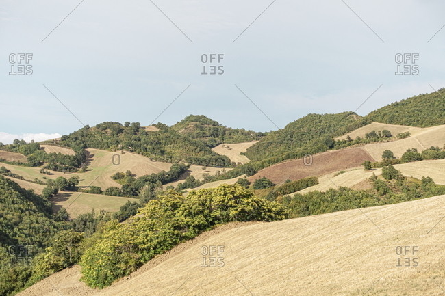Rolling hills in the countryside in the Marche region of Italy