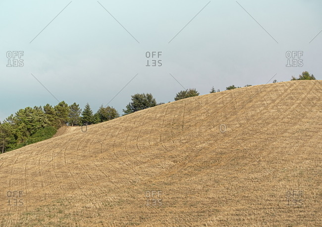 Hills in the countryside in the Marche region of Italy