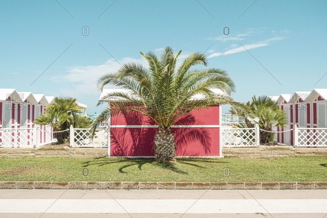 Beach with red buildings and palm tree in Fano, Marche, Italy