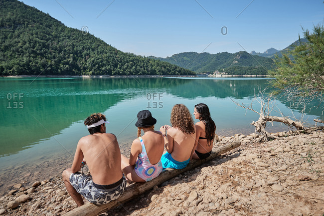 Back view of company of friendly people relaxing on tree log near lake and enjoying sunny day during vacation together