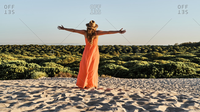 Back view of graceful female wearing dress and straw hat standing on sandy shore and admiring green landscape