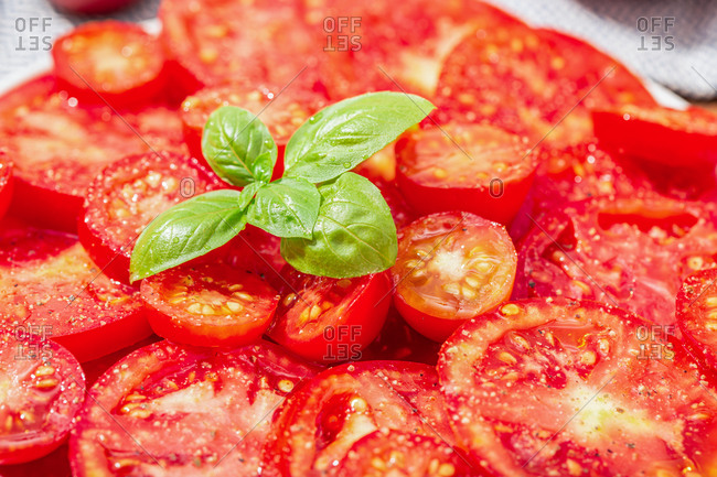 Close up of Tomato salad and basil leaves on plate. Mediterranean food