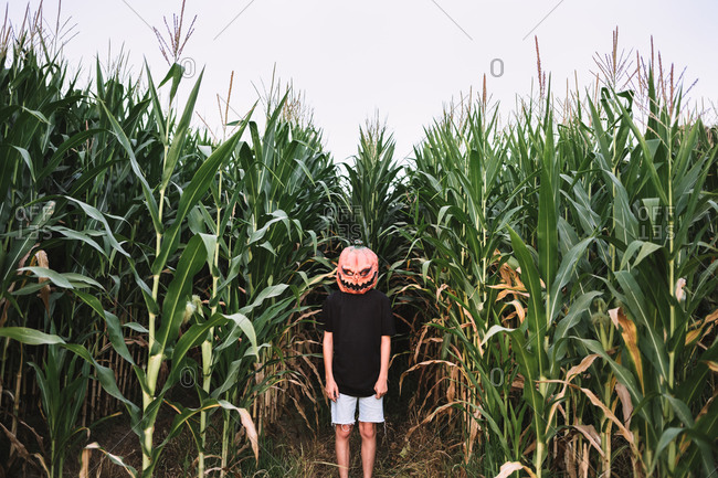 Anonymous person wearing spooky Halloween pumpkin mask and black cloak standing in cornfield and looking at camera