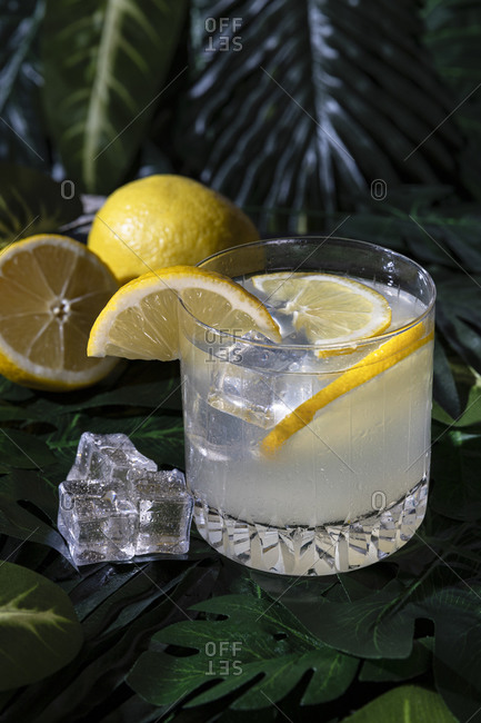 High angle of glass of cold refreshing alcohol drink with ice cubes garnished with lemon slice and placed on table in bar