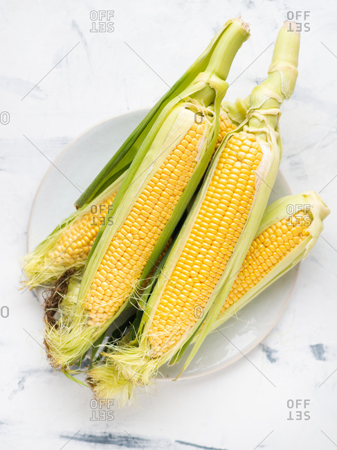 Overhead view of raw fresh corn on the cob served on plate over white background