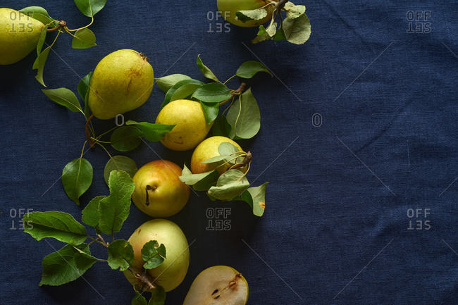 Fresh raw organic pears and apples from the garden with leaves and stems on dark blue background
