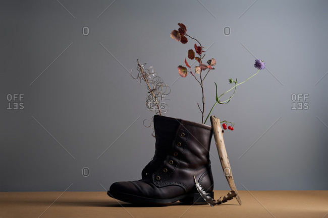 Still life with field plants, feathers and leather shoe