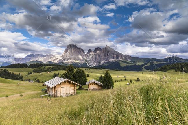 Wooden huts on a meadow in front of Langkofel (3181m) and Plattkofel (2958m), Alpe di Siusi, Seiser Alm, Sciliar-Catinaccio Nature Park, Bolzano District, Trentino-Alto Adige, South Tyrol, Italy