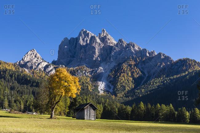 Small hut in the Prags valley beneath Mount Regenstein (2839 m), Fanes-Sennes-Prags Nature Park, Pragser Dolomites, Dolomites, South Tyrol, TrentinoAlto Adige, Italy