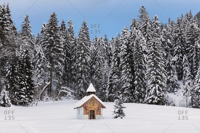 Little chapel and christmas tree in winter landscape, near Elmau, Klais, Upper Bavaria, Bavaria, Germany