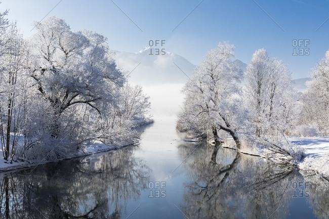 Snow covered trees reflecting in the Loisach River in front of Heimgarten (1790m), fog, winter, Kochel am See, Oberbayern, Bavaria, Germany