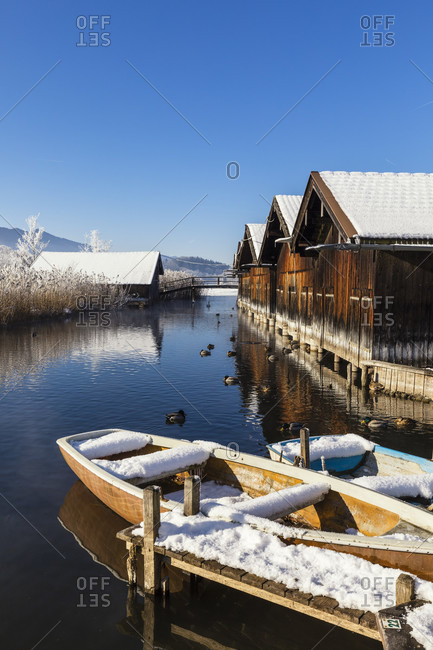 Snow covered rowing boats and common ducks in winter on Staffelsee at Seehausen near Murnau am Staffelsee, Oberbayern, Bavaria, Germany