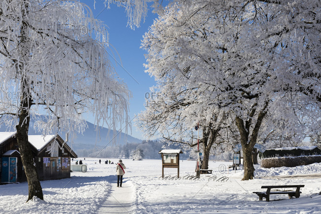 January 22, 2017: People strolling beneath snow covered trees in winter by the shores of Staffelsee at Seehausen near Murnau am Staffelsee, Oberbayern, Bavaria, Germany