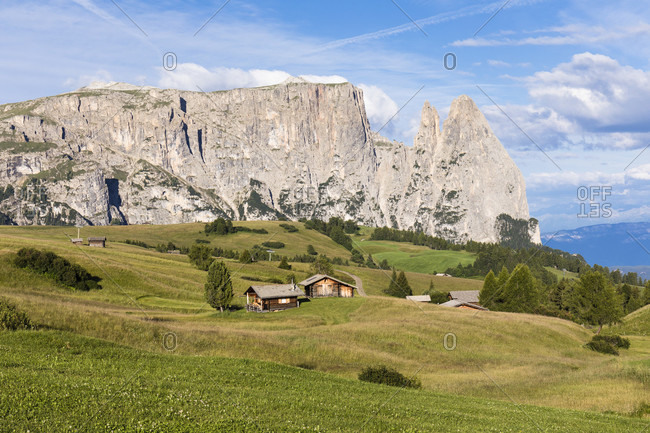 Meadow with huts in front of Schlern (2563m) and Santner Spitze (2413m), Alpe di Siusi, Seiser Alm, Sciliar-Catinaccio Nature Park, Bolzano District, Trentino-Alto Adige, South Tyrol, Italy