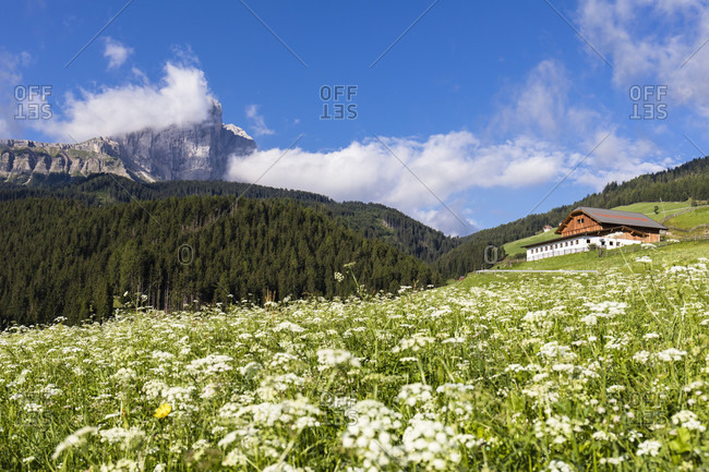 Meadow in front of farm houses and Peitlerkofel (2875m) partly in clouds, Antermoia, Trentino-Alto Adige, Italy
