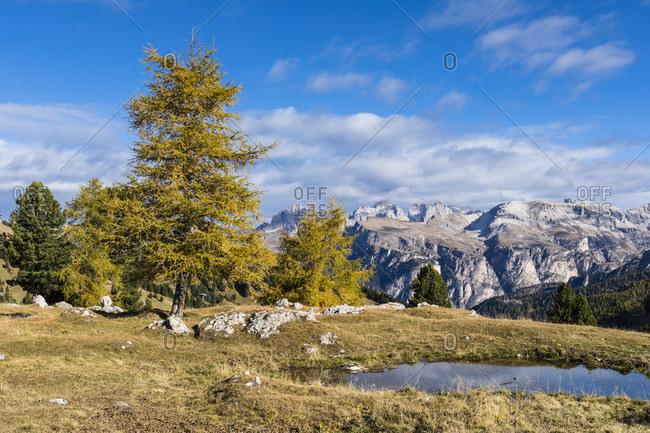 View towards the Gruppo delle Odle (Geislerspitzen) (3025m) and Monte Stevia (2552m), Sella Pass, Dolomites, TrentinoAlto Adige, South Tyrol, Italy