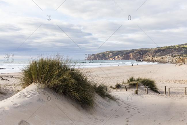 Dunes at Praia do Guincho, Cabo da Roca in the background, Sintra-Cascais Nature Park, Sintra, Greater Lisbon, Portugal