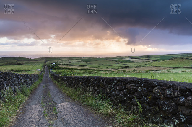 Country road by a stone wall is leading to fields at sunrise