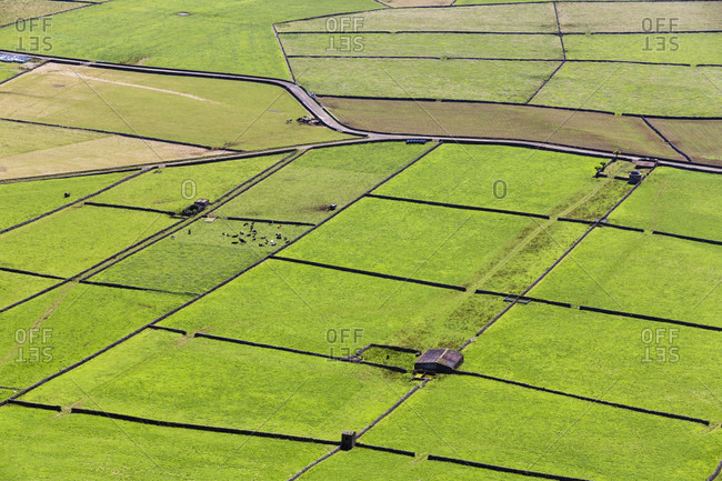 Field patterns of the agricultural landscape seen from Serra do Cume