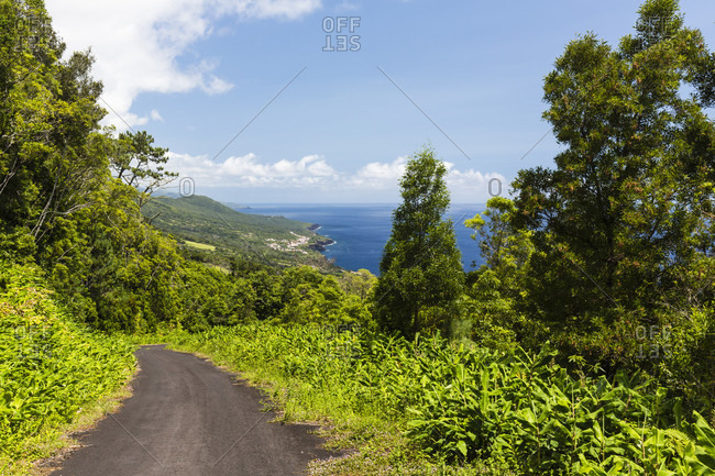 Road leading down among trees, offers an elevated view on the coastline with the village of Sao Caetano and Terra do Pao