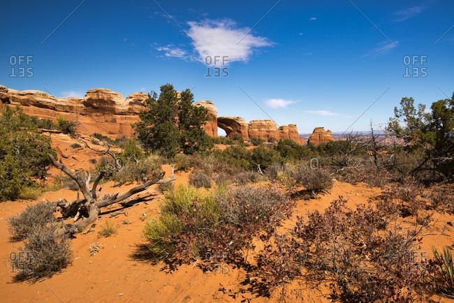 USA, Utah, Arches National Park, Devils Garden, rock formations,