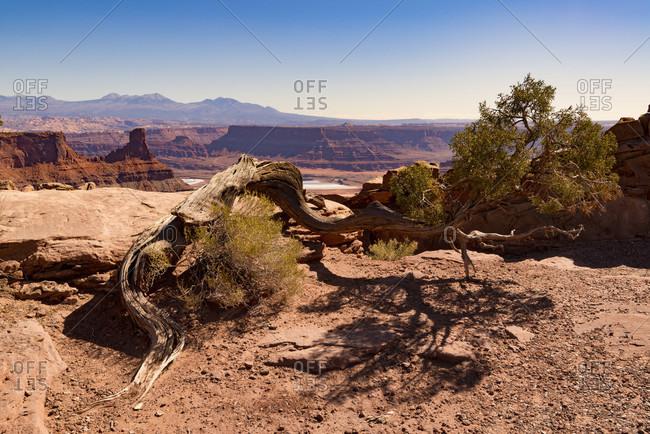 Arches National Park, Moab, USA, landscape