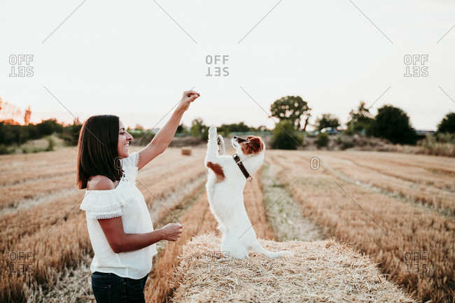 Woman playing with dog on straw bale during sunset