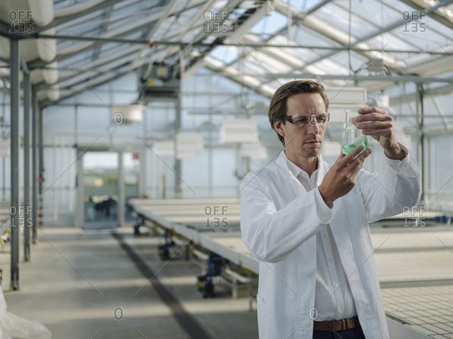 Scientist examining liquid in a greenhouse