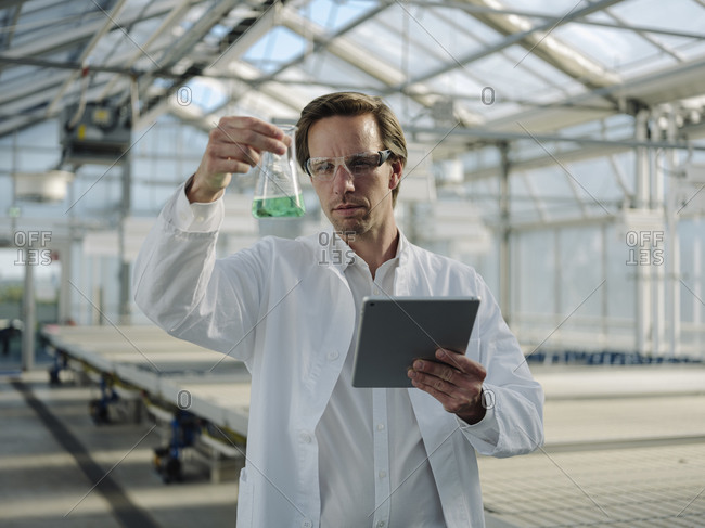 Scientist with tablet examining liquid in a greenhouse