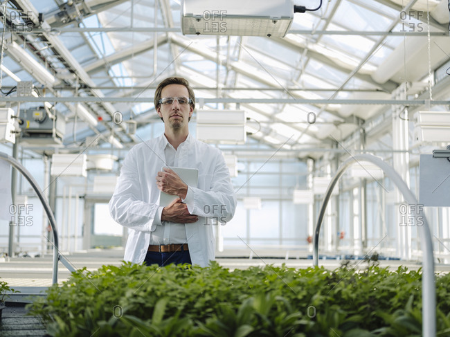 Portrait of a confident scientist holding tablet in a greenhouse