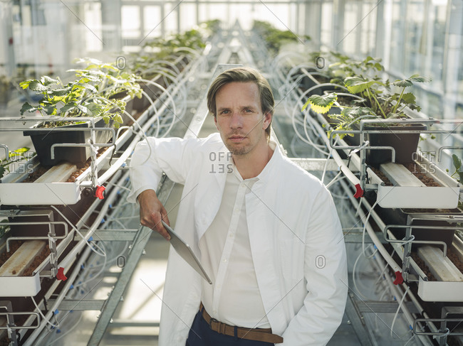 Portrait of a scientist holding tablet in a greenhouse