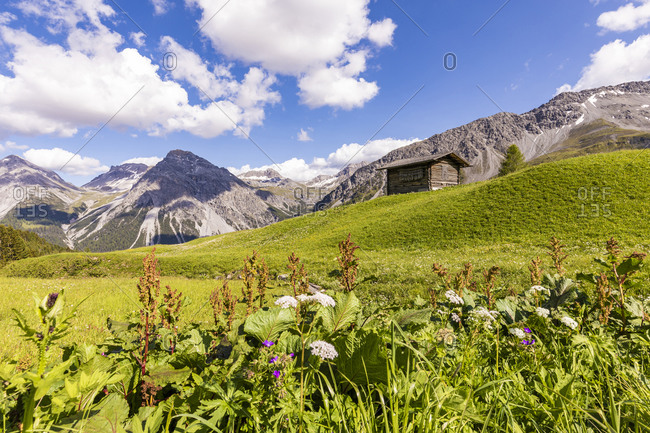 Swiss Alps in summer with secluded hut in background
