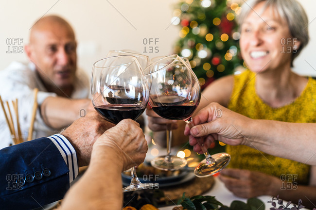Happy partners raising glasses of alcoholic drink while gathering at table during festive event in apartment