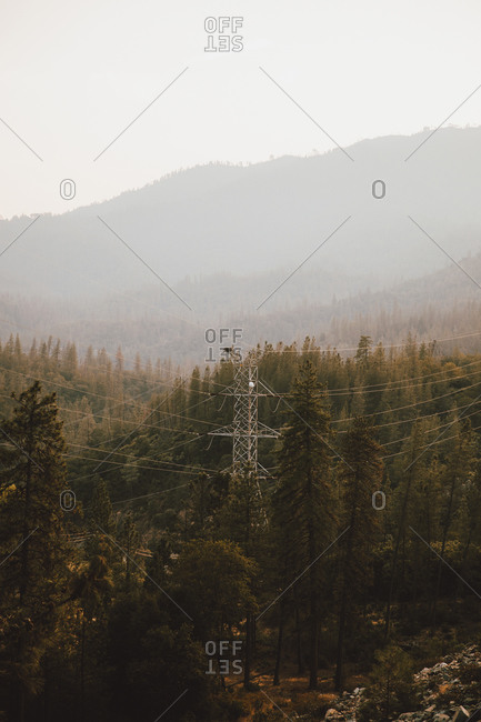 Electricity pylon among trees in forest, Redding, California, USA