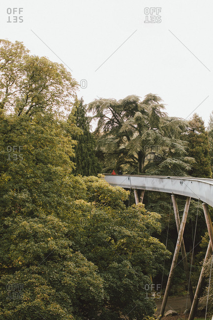 Elevated bridge among trees, Westonbirt, UK