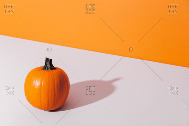 One pumpkin on a table near orange background